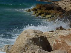Jaffa-Sea (4)
