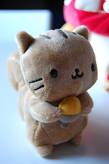 WISHLIST: San-x Nyanko Squirrel Plush ( Veronica ) Tags: squirrel sanx nyanko