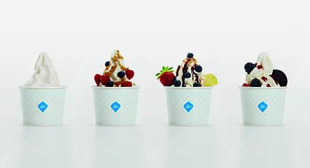 EFA's Frozen Yogurt