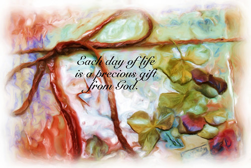 each day of life is a gift
