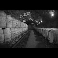 Cave de Bordeaux