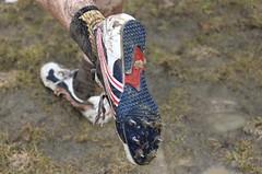 Tretry nejsou jen pro sprintery