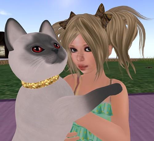 cat housekeeper_004