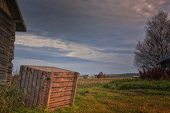 Wooden Crate By The Barn (k009034) Tags: 500px wooden copy space finland matkaniva oulainen tranquil scene agriculture autumn barns birch box clouds countryside crate fields nature no people old rural sky trees teamcanon copyspace tranquilscene nopeople