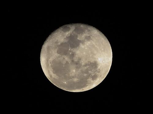 Luna-Perigeo-19-Marzo-2011-800x600