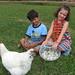 Jaya_2008_flock_01