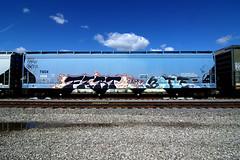 FART  BATLE (TRUE 2 DEATH) Tags: railroad train graffiti graf railcar fart boxcar railways hopper railfan freight 663 batle 663k benching