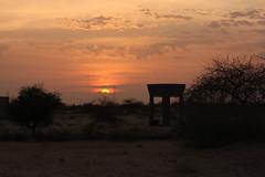 West Africa-5254