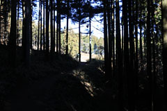 小仏城山の巻道