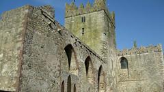 Tintern Abbey (Ken Meegan) Tags: ireland abbey tinternabbey tintern cowexford saltmills 1042011