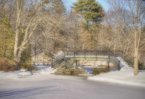 Bridge At The Carousel In Roger Williams Park