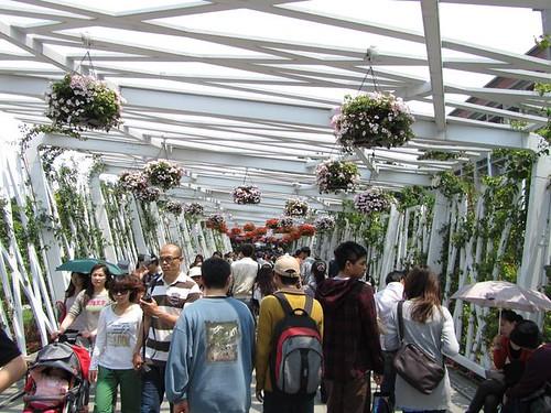 2011花博-花之隧道-邊走邊逛.jpg