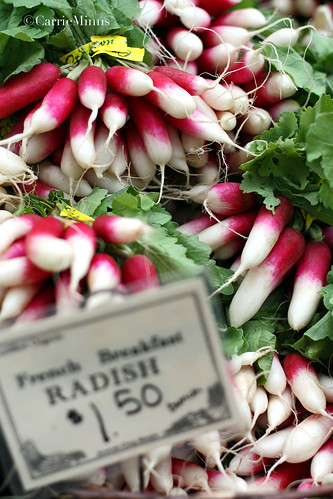 Little French Radishes