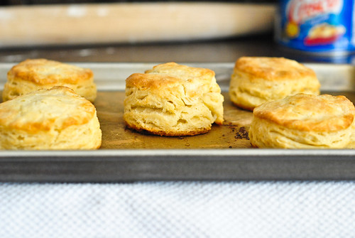 flakiest buttermilk biscuits