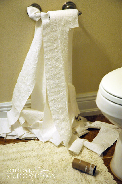 toiletpaper1021