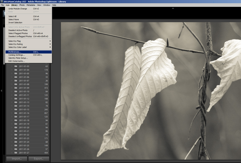 Camera Raw Cache Settings