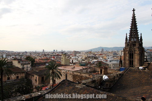 barcelona city and cathedral