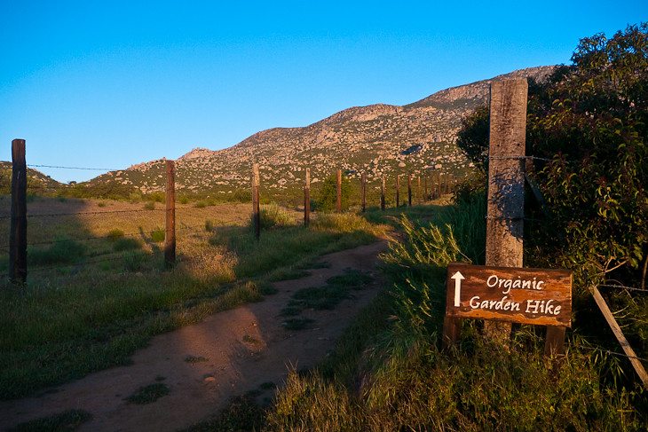 hikes to sacred mountain rancho la puerta
