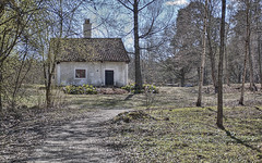 Cottage (Kim Ledin) Tags: sunshine se spring sweden cottage sunny birch bjrk eskilstuna stuga sundbyholm sodermanland