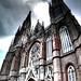 Catedral, panoramica