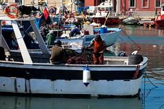 """"""" Fisherman's Life """", Livorno (mauropaolocascasi) Tags: sea fisherman mediterraneo mare natura barche toscana pesca livorno gabbiani ambiente ecologia reti pescatori ecosistema pescherecci abigfave paololivornosfriends"""