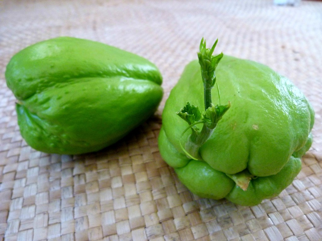 The World's Best Photos of chayote and green - Flickr Hive ...