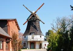 Ülsby, bemitleidenswerte Mühle (antje whv) Tags: ülsby deutschland germany schleswigholstein windmühle windmill mill molen mühleninschleswigholstein mühlen mills