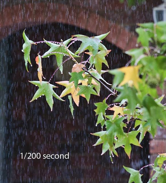 Rain @ 1/200