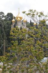 Church of St Mary Magdalene - Mount of Olives - Jerusalem (jrozwado) Tags: church israel asia jerusalem monastery cupola dome russian mountofolives mountolivet orhtodox