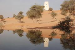 Reflection (furtive) Tags: tree tower pool swimming sand dubai desert refelction banyantree alwadi