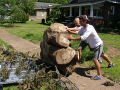 Two guys and a stump - the saga resumes (Jer*ry) Tags: tree men project lift massive stump trunk heavy load sagaofthestump