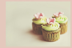 Heavenly... (azyalg { Little Twinkles Photography }) Tags: flower green cake cupcakes az pistachio frosting garnish aziza d700 azyalg