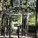 La Novena Puerta 22-04-2007. Casos de teleportaciones