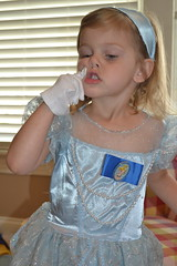 Cinderella Sillies