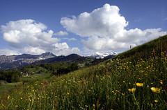 You Could  Everywhere Be At Home (AincaArt) Tags: cloud mountain nature berg landscape switzerland natur meadow wiese wolke landschaft berneroberland berneseoberland mungga nikond7000 youcouldeverywherebeathome aincaart