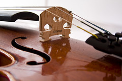 Stentor Violin (Jonathan.Russell) Tags: wood brown reflection canon shiny violin string stentor 40d