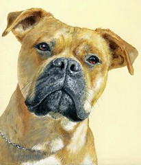 "Maggie - Acrylic on canvas • <a style=""font-size:0.8em;"" href=""http://www.flickr.com/photos/64357681@N04/5866520987/"" target=""_blank"">View on Flickr</a>"