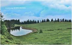 Schwarzsee 3_HDR (peter pirker) Tags: canon landscape austria see sterreich wiese krnten carinthia alpine alm grn landschaft dri hdr wandern wander greem dynamik peterfoto eos550d