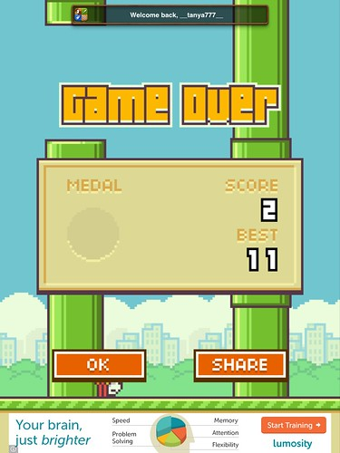 Flappy Bird End-game: screenshots, UI