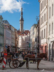 Tallinn. Viru street. October 1, 2016 (alexpta) Tags: oldtown tallinn everydayphoto hourse project365