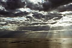 MG_8021-01.JPG (Harmke) Tags: landscape wad wadden waddenzee eb seascape holland netherlands sea sun clouds beach travel photography landscapelovers nature worldheritage lowtide