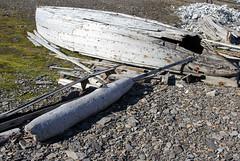 Remains fron the whaling activity IMG_9352 (grebberg) Tags: bamsebu ahlstrandhalvya spitsbergen svalbard july 2016 boat rowingboat kapptoscana