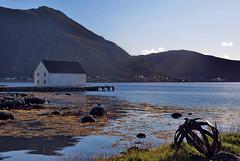 Naust p Remy - - Seahouse at Remy (erlingsi) Tags: naust seahouse farwest island kystkultur norway herykommune kyst tang seaweed