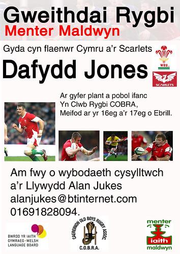 Poster Rygbi