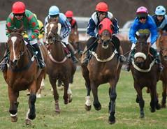 Overton farm (RCB4J) Tags: scotland horserace lanarkshire pointtopoint tamron70300 clydevalley overtonfarm sonya55 ronniebarron rcb4j