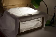Simple Photo Light Box, Cardboard & Cloth (ShardsOfBlue) Tags: photography box stage free towel tools setup simple cheap lightbox dishtowel