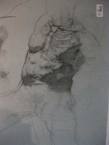 RLiberace Anatomy of Torso wkshop - Robs dwg 5