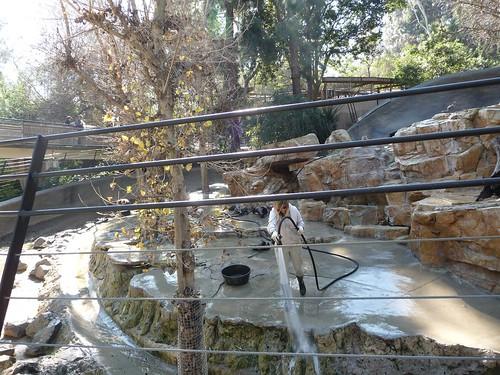 Los Angeles Zoo january 2011