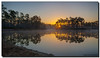Today Five Years Ago (Fraggle Red) Tags: sky sun lake reflection fog sunrise dawn nationalpark florida flickrversary evergladesnationalpark campground pinetrees hdr enp canonef24105mmf4lisusm 3exp longpinekey miamidadeco dphdr 5thflickranniversary