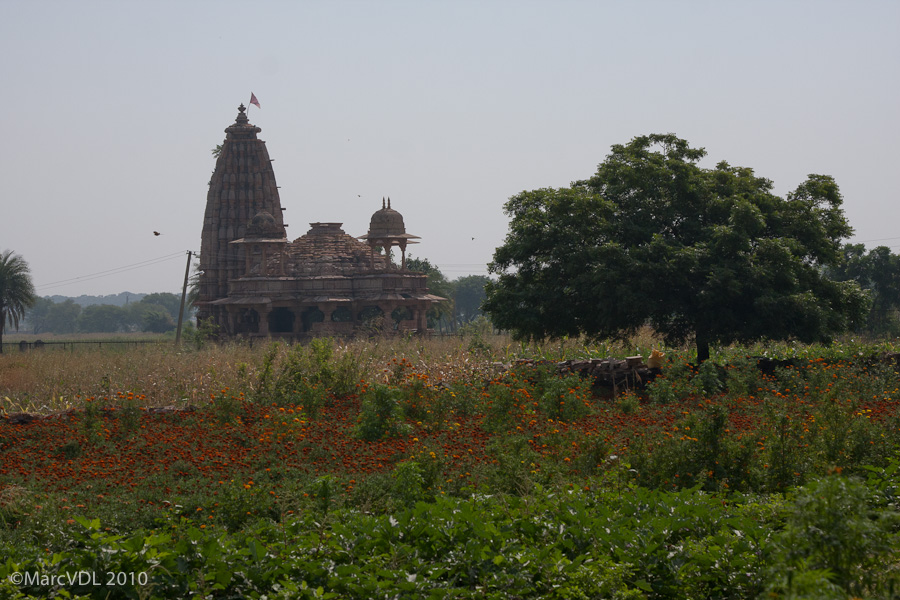 Rajasthan 2010 - Voyage au pays des Maharadjas - 2ème Partie 5598410809_6f678b513c_o